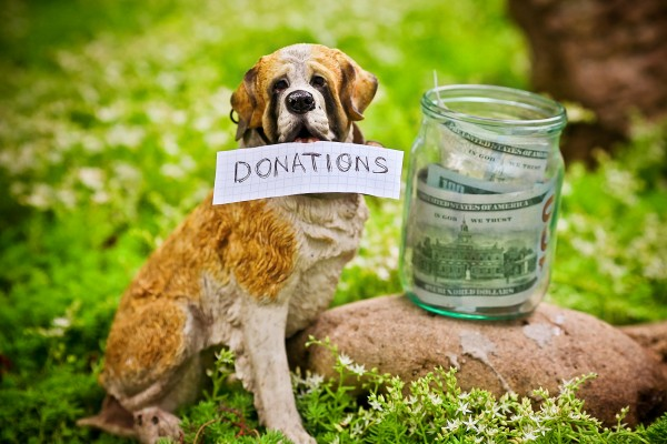 Your Donations Helps Save Lives