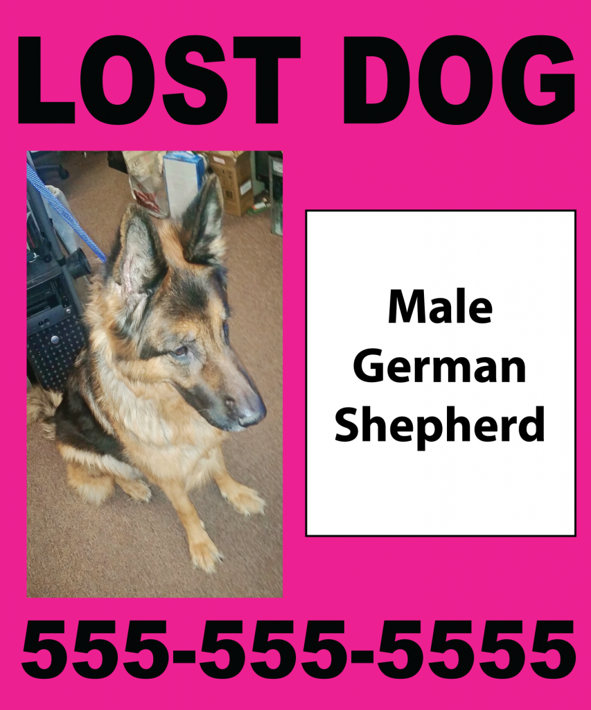 Lost Dog Big Neon Poster